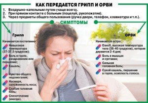грипп4